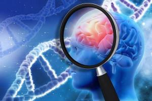 csm_pesquisa-cerebro-IStock-Getty_Images_061f0eb40f